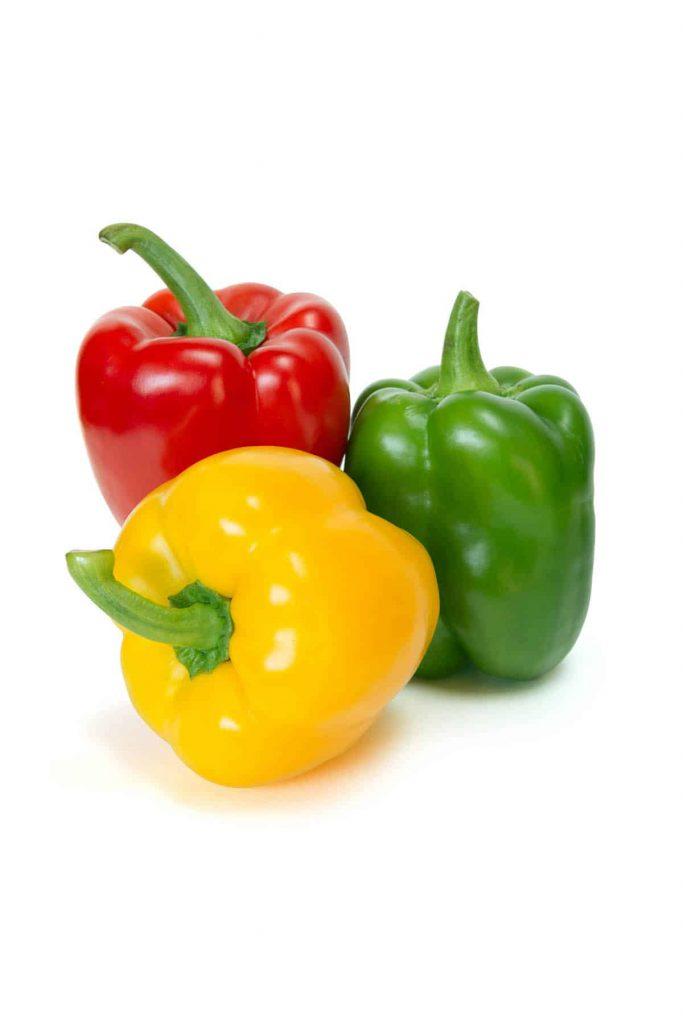 Vruchtgroenten substraat Lensli